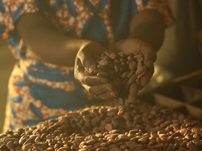ALL_about-us_Cocoa-Farming-Program_cocoa-beans_hands_HeroEditorial.jpg